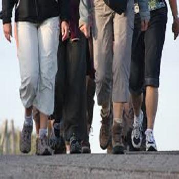 JCCV Lively Walking Group Image Square